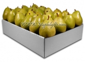 Pears in a Box