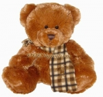 Honey Cute Bear