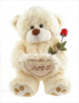 Teddy with Red Rose
