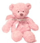 Washable Pink Bear